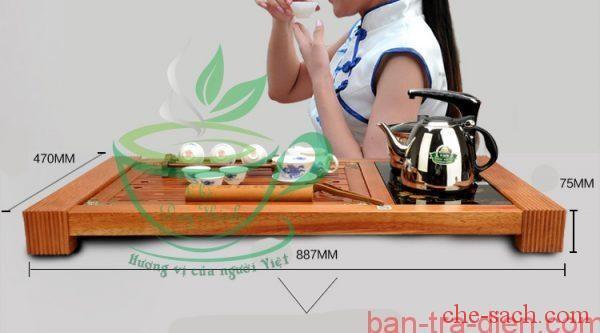 ban-tra-dien-da-nang-dt05-4-600x332